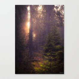 The Ghost of Snow Canvas Print