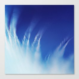 White Feathers Floating Up to Heaven Canvas Print