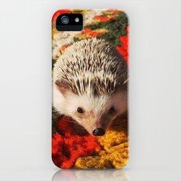 Juni Hedgehog Blanket iPhone Case