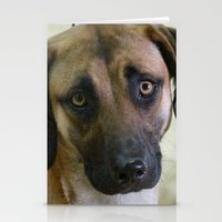 the hound Stationery Cards featuring Hound Pup by IowaShots