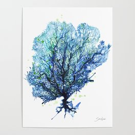 Fan Coral - Aqua Poster