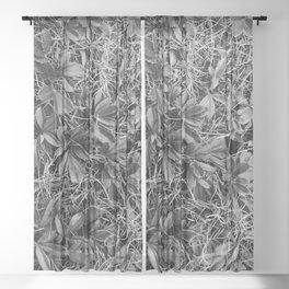 B&W Autumn Turf Sheer Curtain