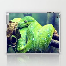 Snake Laptop & iPad Skin