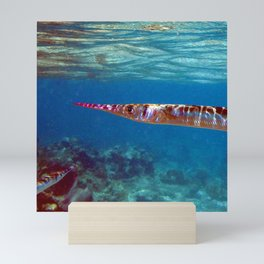 Watercolor Fish Flat Needlefish, The Needler Mini Art Print