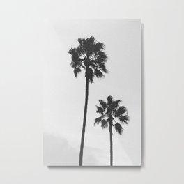 twin palms Metal Print