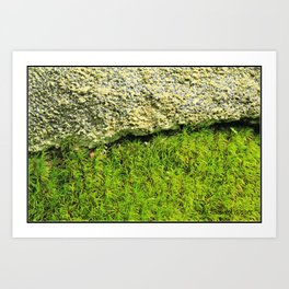 Dichotomies of Matter * Moss Rock Art Print