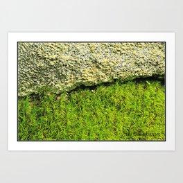 Dichotomies of Matter * Moss Rock Art Print