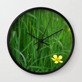 Flowers Izby Garden 5 Wall Clock