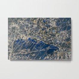 Botanical Gardens II - Holographic Mineral #360 Metal Print