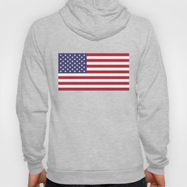 Flag of USA, 10:19 scale prints Hoody
