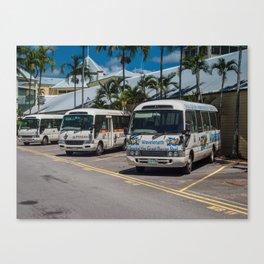 Tourist Shuttles Canvas Print