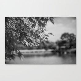 Autumn Scene (Black and White) Canvas Print