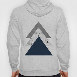 Blue grey monochrome blossom arrows Hoody