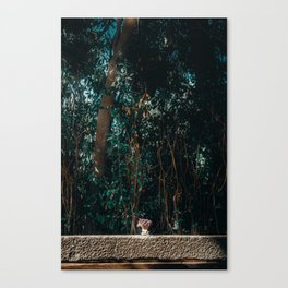 Simply Nature Canvas Print