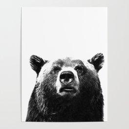 Black and white bear portrait Poster