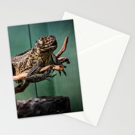 Languid Lizard Stationery Cards
