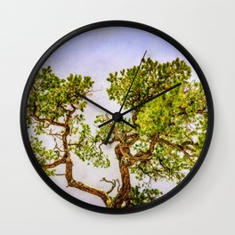 Curly Pine Wall Clock