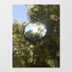 Surveillance Tree #3 Canvas Print
