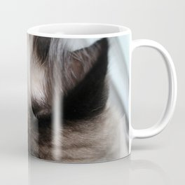 Whiskers Coffee Mug