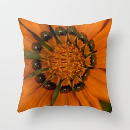 Pumpkin Petals Throw Pillow