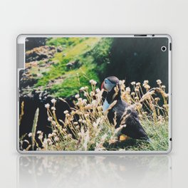 Puffin On Staffa Island Laptop & iPad Skin