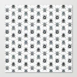 Goliath Beetles Canvas Print