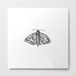 Moth (black & white) Metal Print