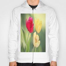 Red & Yellow Tulips Hoody