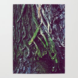 art of the tree Poster
