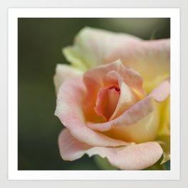 Flower Five Art Print
