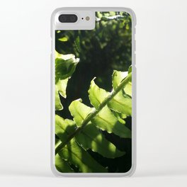 Ferns unrolling. Clear iPhone Case