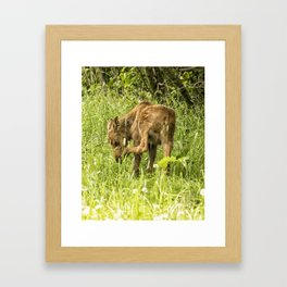 Itchy Nose or Smelly Feet? Framed Art Print