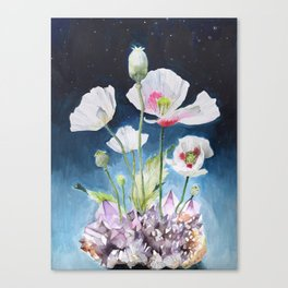 Papaver Somniferum and Amethyst Crystal on a Stary Night at Dawn Canvas Print