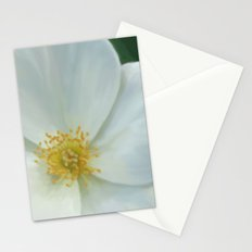 Ambience  Stationery Cards