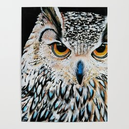 Owl portrait, acrylic on canvas Poster