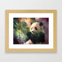 Sanctuaire du grand panda Framed Art Print