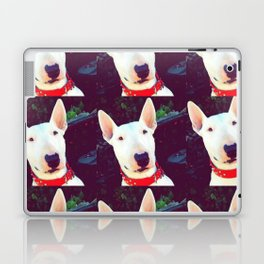 Babs Laptop & iPad Skin