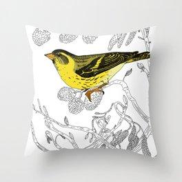 Technicolour Siskin Throw Pillow