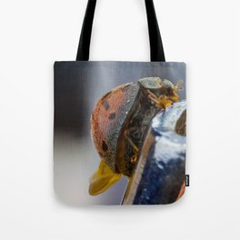 super magnification of a tropical ladybird Tote Bag
