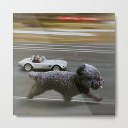 Quite a pace. Metal Print