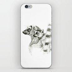 Maki catta and cub iPhone & iPod Skin