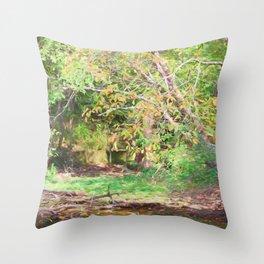 Hickory Ridge Pond Throw Pillow