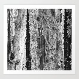 Carvings in Tree Trunk Gnarly Texture Pattern Art Print