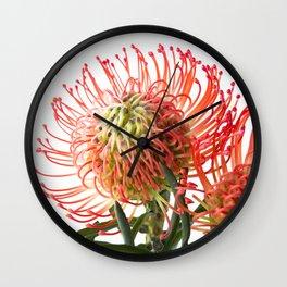 Fynbos Botanical Collection 4 Wall Clock