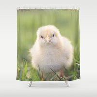 grumpy Shower Curtains featuring grumpy chick by Life Through the Lens