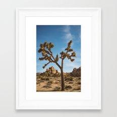 Joshua Tree National Park II Framed Art Print