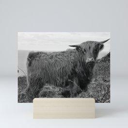 Highland cow II Mini Art Print