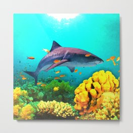 Shark in the water Metal Print