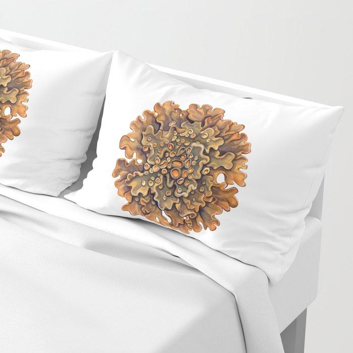 Maritime Sunburst Lichen Pillow Sham