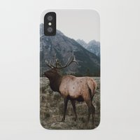 elk iPhone & iPod Cases featuring Elk by jmeshe
